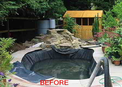Koi fish pond construction uk for Koi pond builders uk