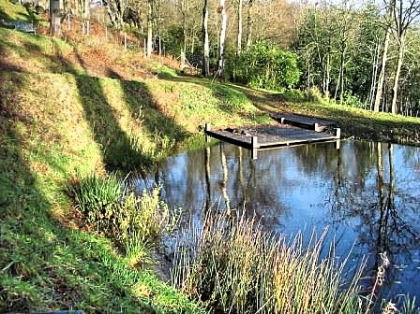 Large garden pond construction by naiad pond services for Pond builders uk