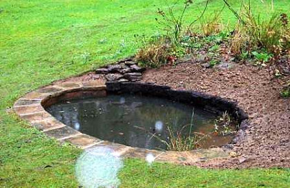 Smaller garden ponds a selection by naiad pond services for Garden ponds uk