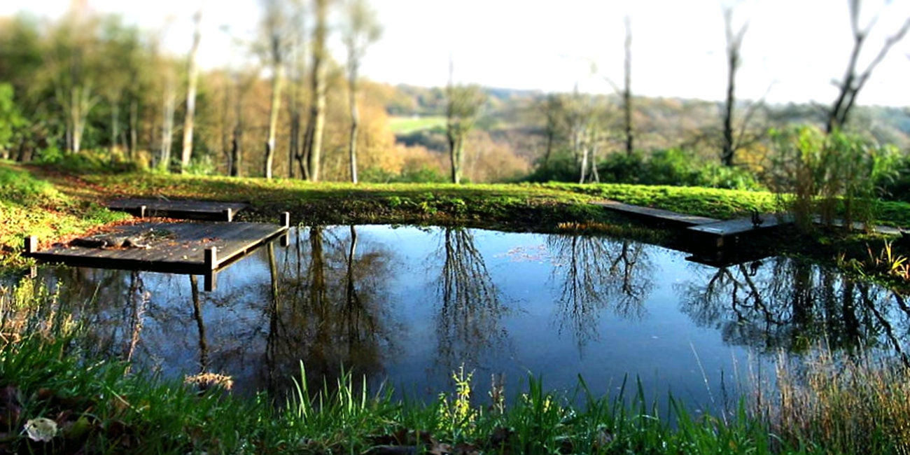 Lined pond on a steep hillside with a view